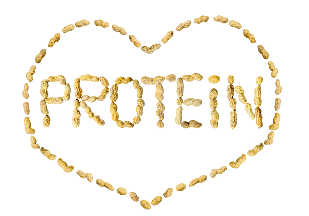 co the can bao nhieu protein moi ngay