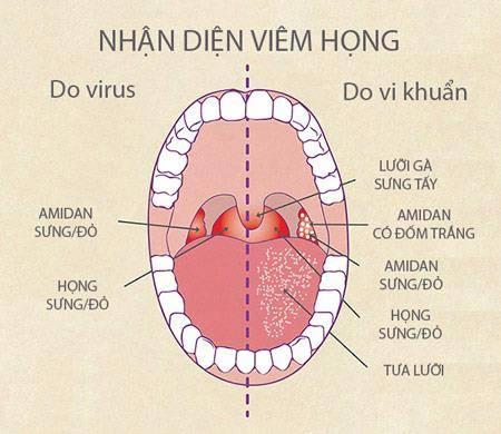 viem-hong-hat-man-tinh