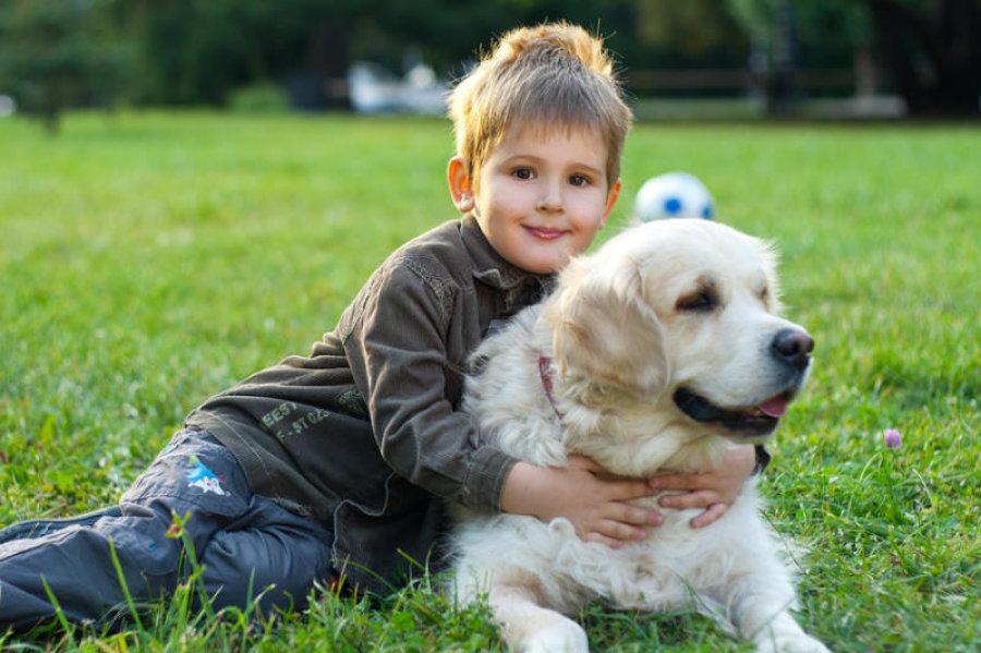 Vì sao nên cho bé nuôi thú cưng